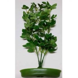 Plant APS-106 T12 Resun