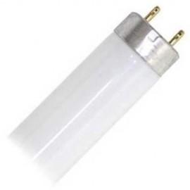 Lighting Resun 10 000K T8 Bulb 25 W